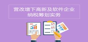 营改增下高新及软件企业纳税筹划实务