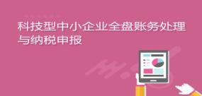 科技型中小企业全盘账务处理与納稅申報