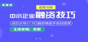 中小民营企业融资技巧实务