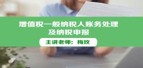 增值税一般纳税人账务处理及纳税申报